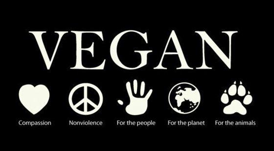 vegan-life.jpg